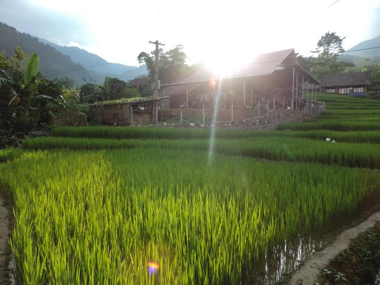 Ban Ho Homestay