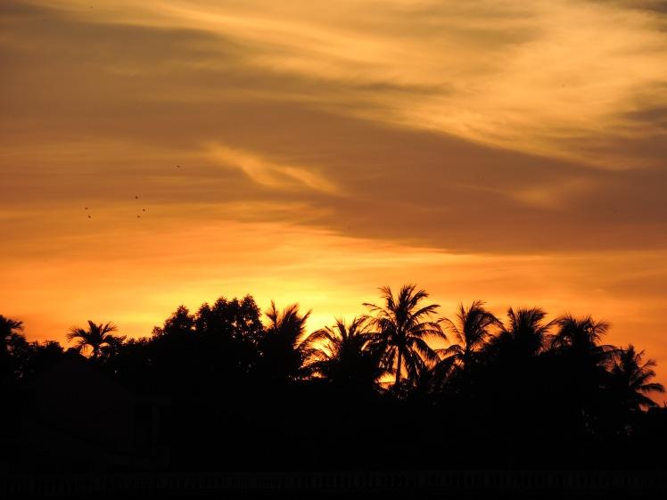 Sunrise Hoi An 1