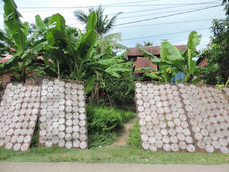 Rice paper Battambang.jpg